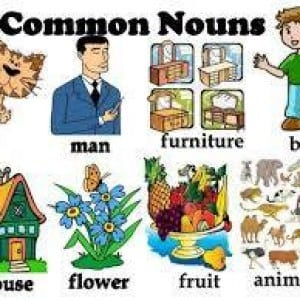 Common-noun