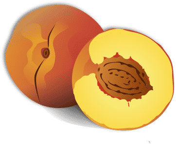 peach-persik