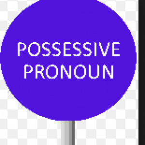 Possessive-Pronoun