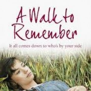 contoh novel A Walk to Remember