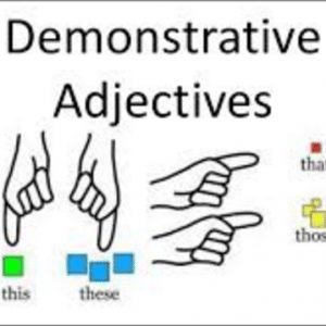 Demonstrative-Adjectives