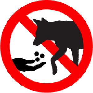 dont feed animal