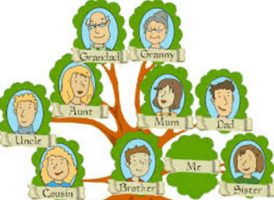Family Tree Anggota Dan Sisilah Keluarga Dalam Bahasa Inggris