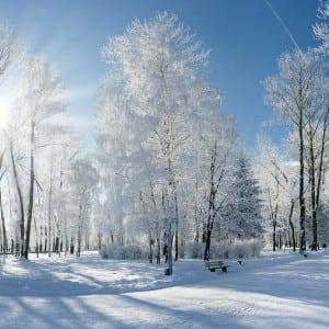 Winter Kumpulan Musim (Season) Dalam Bahasa Inggris Dan Penjelasan Lengkapnya