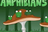binatang-amfibi