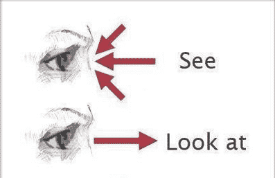 Perbedaan Kata 'See' Dan 'Look' Beserta Contoh Kalimatnya Dalam Bahasa Inggris