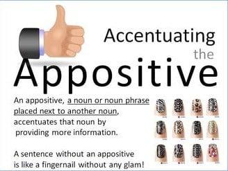 Pengertian Appostive Dan Contoh Appositive