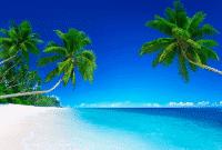 Lirik-Lagu-Nasional-Rayuan-Pulau-Kelapa-Dalam-Bahasa-Inggris