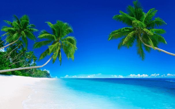 Lirik Lagu Nasional Rayuan Pulau Kelapa Dalam Bahasa Inggris